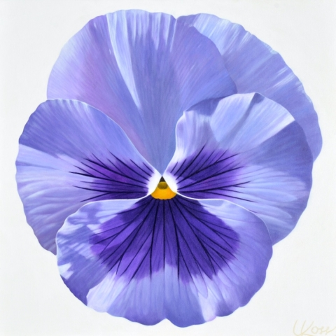 Pansy 22, 24x24 (Sold)