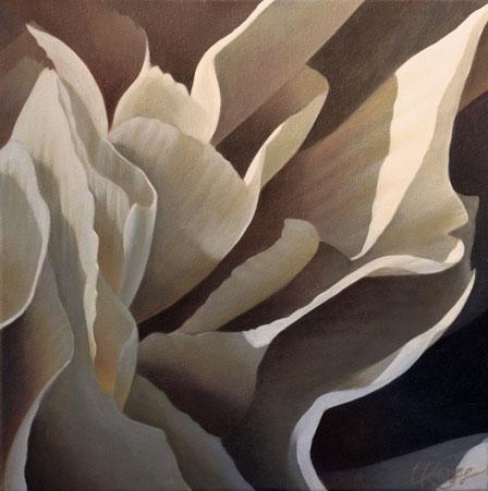 """Carnation 14, 12"""" x 12"""" Acrylic on Canvas"""