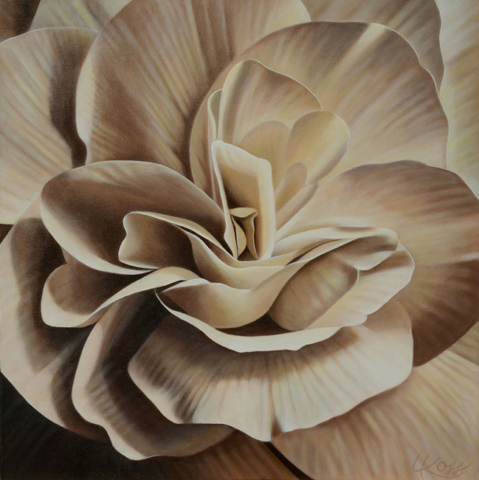 Begonia 9, 24x24 (Sold)
