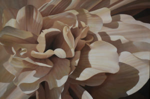 Begonia 10 | 24x36 acrylic on canvas by Canadian Artist, Laurie Koss who is known for her big flower (macro floral) paintings in neutral tones.