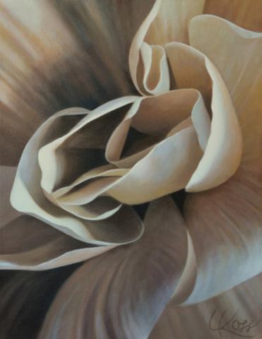 Begonia 14, 18x14