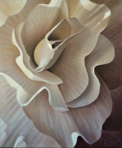 Begonia 15 | 24x20 acrylic on canvas by Canadian Artist, Laurie Koss who is known for her big flower (macro floral) paintings in neutral tones.