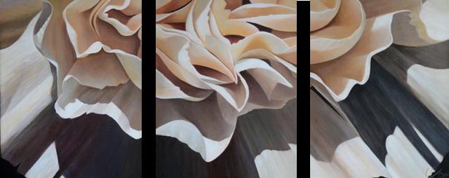 Carnation 19-Triptych, 14x33