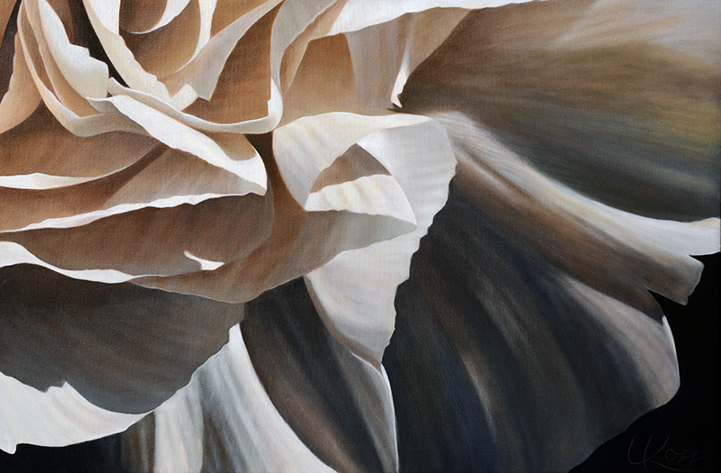Carnation 20 | 20x30 acrylic on canvas by Canadian Artist, Laurie Koss who is known for her big flower (macro floral) paintings in neutral tones.