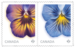 2105 Canadian Stamps by Laurie Koss