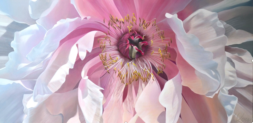 Peony 4 | 24x48 acrylic on canvas by Canadian Artist, Laurie Koss who is known for her big flower (macro floral) paintings.