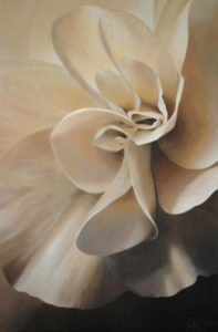 Begonia 1 | 30x20 acrylic on canvas by Canadian Artist, Laurie Koss who is known for her big flower (macro floral) paintings in neutral tones.
