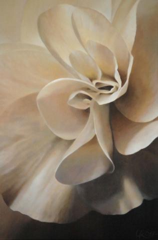 Begonia 1, 30x20 (Sold)