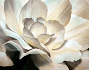 Begonia 4   16x20 acrylic on canvas by Canadian Artist, Laurie Koss who is known for her big flower (macro floral) paintings in neutral tones.