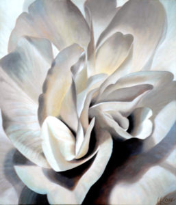 Begonia 6   30x26 acrylic on canvas by Canadian Artist, Laurie Koss who is known for her big flower (macro floral) paintings in neutral tones.
