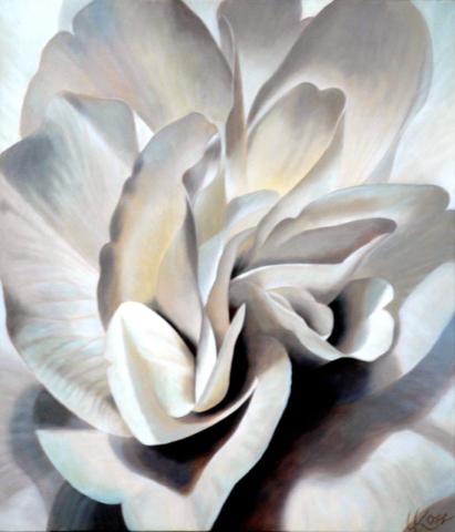 Begonia 6, 30x26 (Sold)