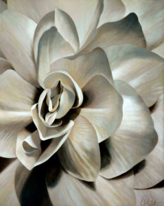 Begonia 7 | 30x24 acrylic on canvas by Canadian Artist, Laurie Koss who is known for her big flower (macro floral) paintings in neutral tones.
