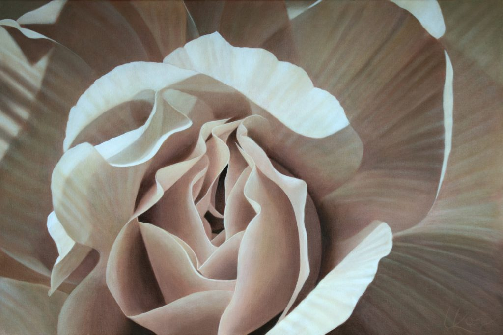 Begonia 13 | 20x30 acrylic on canvas by Canadian Artist, Laurie Koss who is known for her big flower (macro floral) paintings.