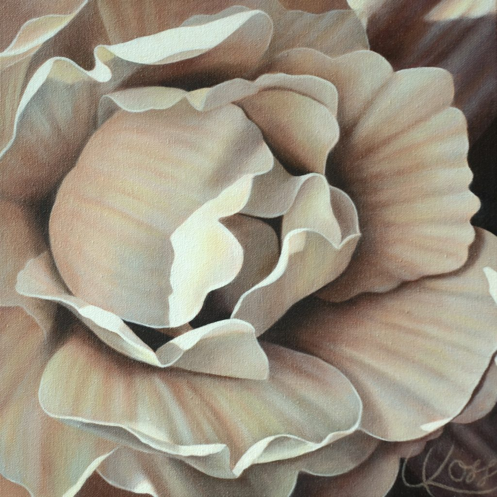 Begonia 18 | 12x12 acrylic on canvas by Canadian Artist, Laurie Koss who is known for her big flower (macro floral) paintings in neutral tones.