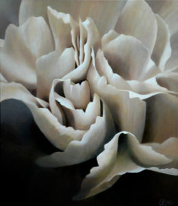 Carnation 7 | 30x26 acrylic on canvas by Canadian Artist, Laurie Koss who is known for her big flower (macro floral) paintings in neutral tones.