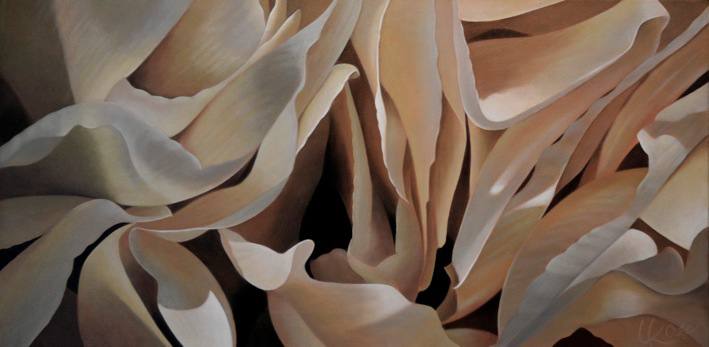 Carnation 15 | 15x30 acrylic on canvas by Canadian Artist, Laurie Koss who is known for her big flower (macro floral) paintings in neutral tones.