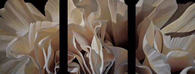 Carnation 16-Triptych, 20x48