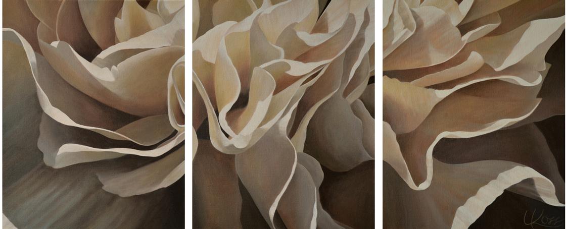 Carnation 21-Triptych, 48x20