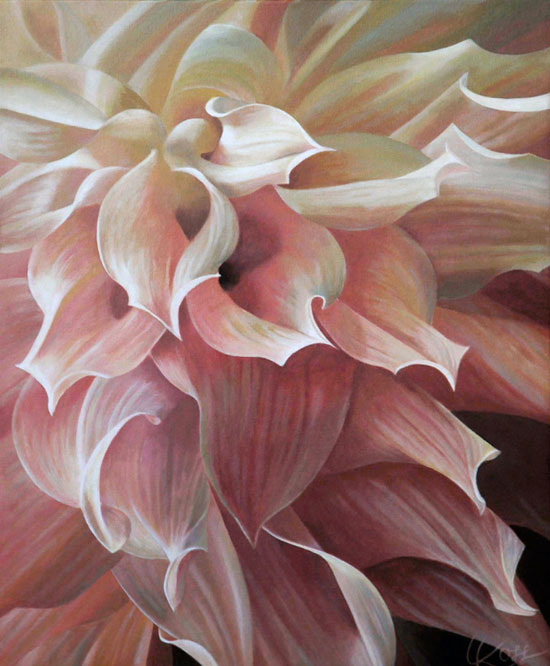 Dahlia 1 | 24x20 acrylic on canvas by Canadian Artist, Laurie Koss who is known for her big flower (macro floral) paintings in neutral tones.