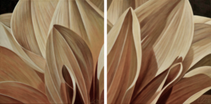 Dahlia 5 | 12x24 diptych acrylic on canvas by Canadian Artist, Laurie Koss who is known for her big flower (macro floral) paintings in neutral tones.