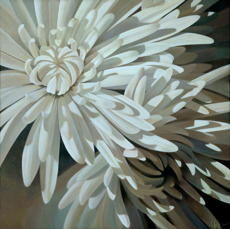 Mum 8 | 36x36 acrylic on canvas by Canadian Artist, Laurie Koss who is known for her big flower (macro floral) paintings in neutral tones.