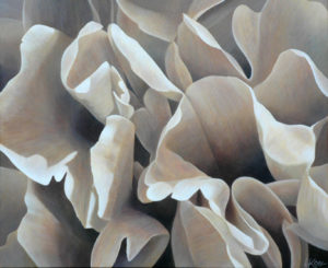 Peony 2 | 30x36 acrylic on canvas by Canadian Artist, Laurie Koss who is known for her big flower (macro floral) paintings in neutral tones.