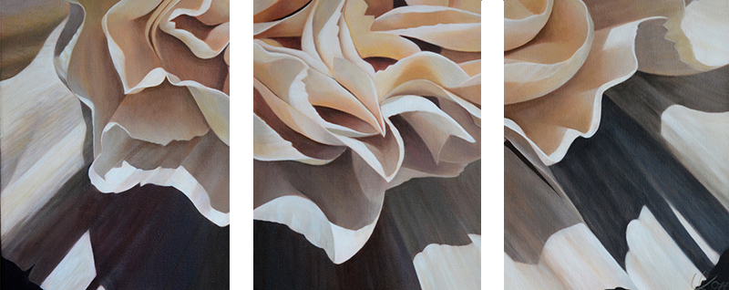 Carnation 19 | 14x33 acrylic on canvas by Canadian Artist, Laurie Koss who is known for her big flower (macro floral) paintings in neutral tones.
