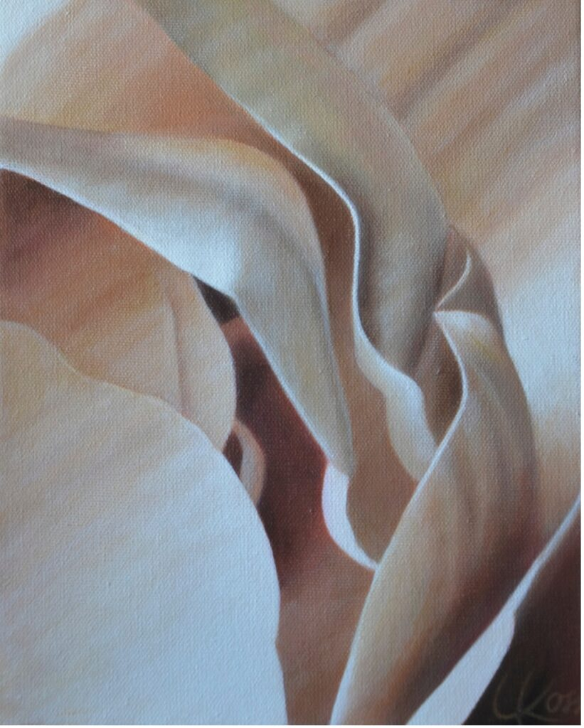 Begonia 16 | 8x10 acrylic on canvas by Canadian Artist, Laurie Koss who is known for her big flower (macro floral) paintings.