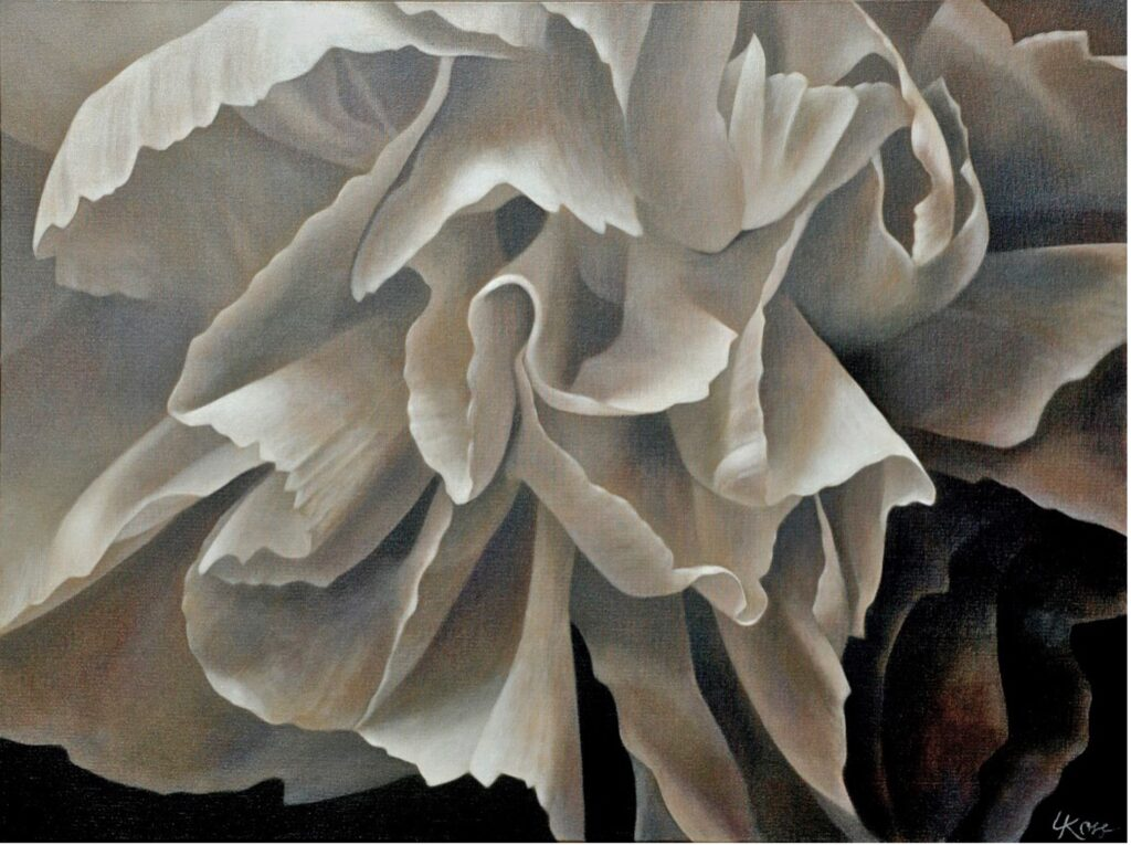 Carnation 4 | 30x40 acrylic on canvas by Canadian Artist, Laurie Koss who is known for her big flower (macro floral) paintings.