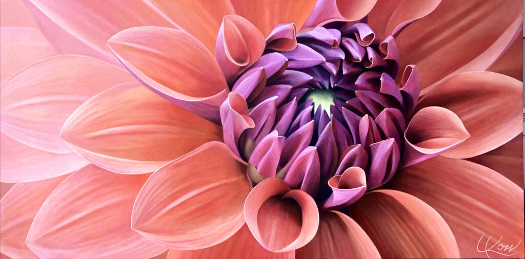 Dahlia 7 | 24x48 acrylic on canvas by Canadian Artist, Laurie Koss who is known for her big flower (macro floral) paintings in neutral tones | SOLD