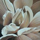 Begonia 17 | 14x14 acrylic on canvas by Canadian Artist, Laurie Koss who is known for her big flower (macro floral) paintings in neutral tones.