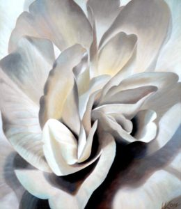 Begonia 6 | 30x26 acrylic on canvas by Canadian Artist, Laurie Koss who is known for her big flower (macro floral) paintings in neutral tones.